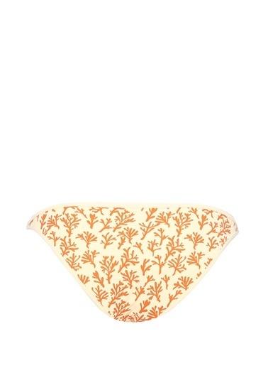 Love Mercan Desenli Bikini Altı Renkli